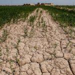 پرداخت غرامت خشکسالی به کشاورزان و دامدارن خوزستان